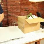 הובלות דירה – כיצד לארוז צמחים