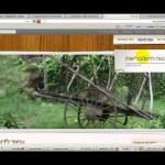 בניית אתר וורדפרס – שיעור 8